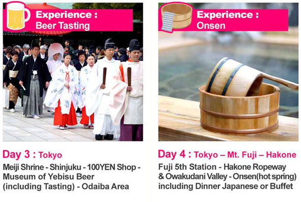8 Day Tour of Japan