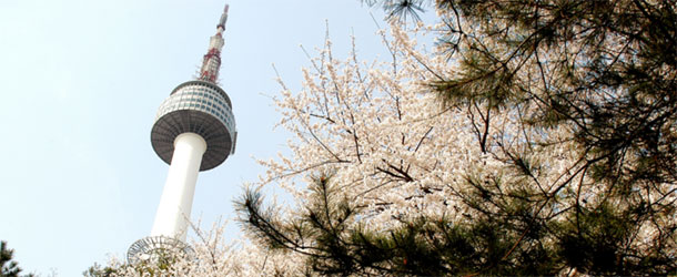 Seoul blossom and Seoul Tower, Korea